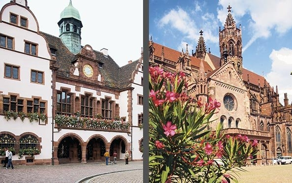 Das Freiburger Rathaus und das Münster.